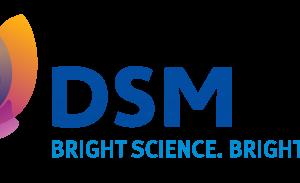 Who is DSM?